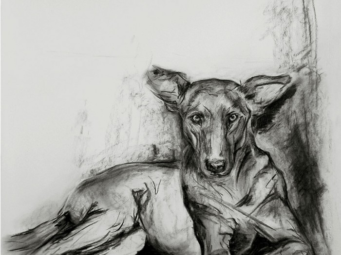 charcoal_direct-crop