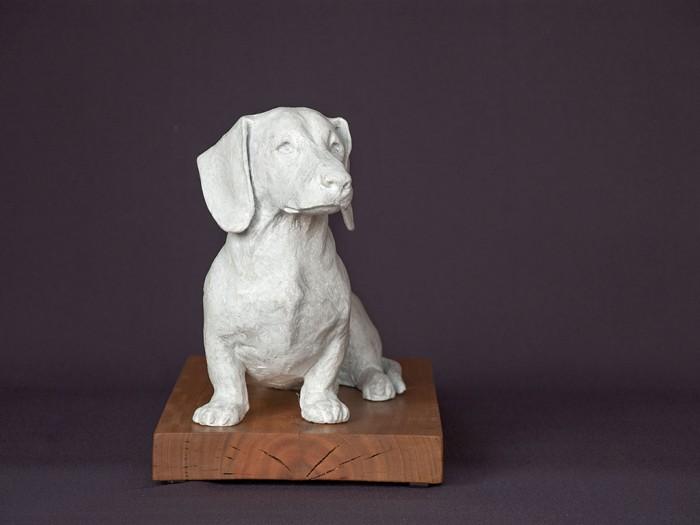 dachshund-front
