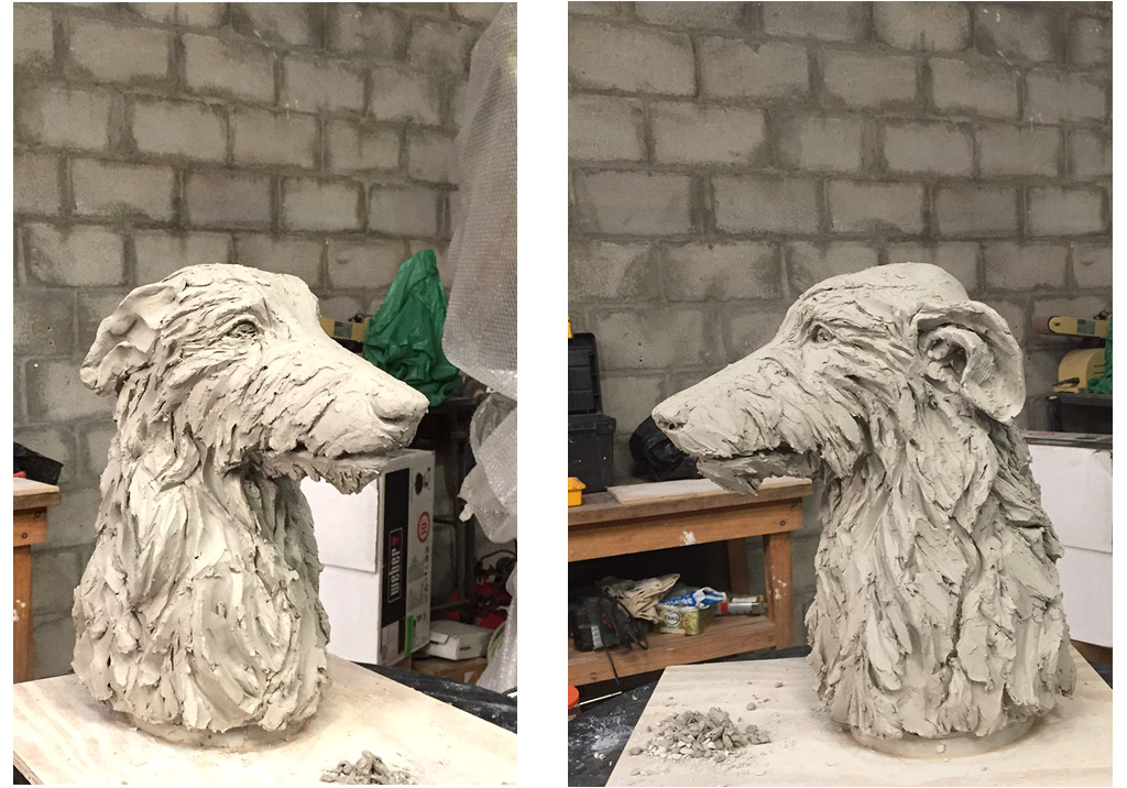 deerhound-working