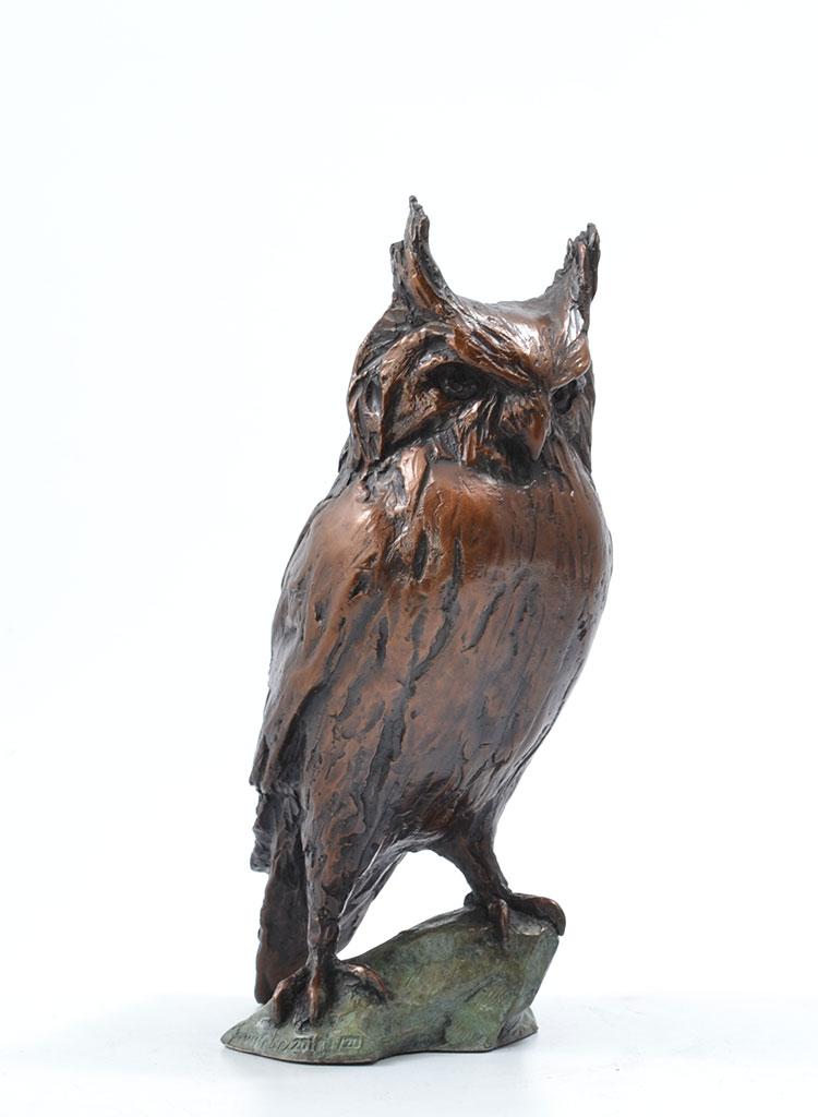 eagle_owl_angle