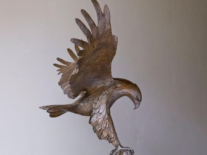 eagle_side