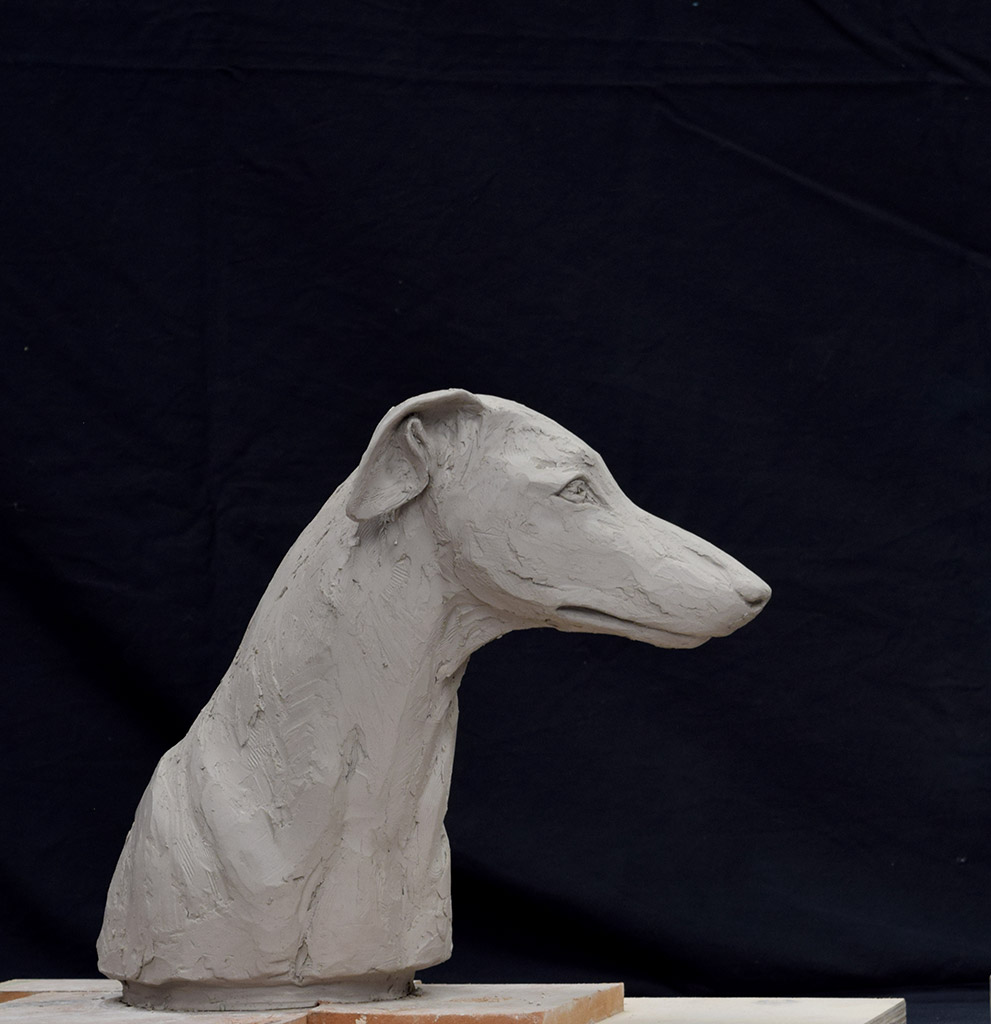 greyhound-side
