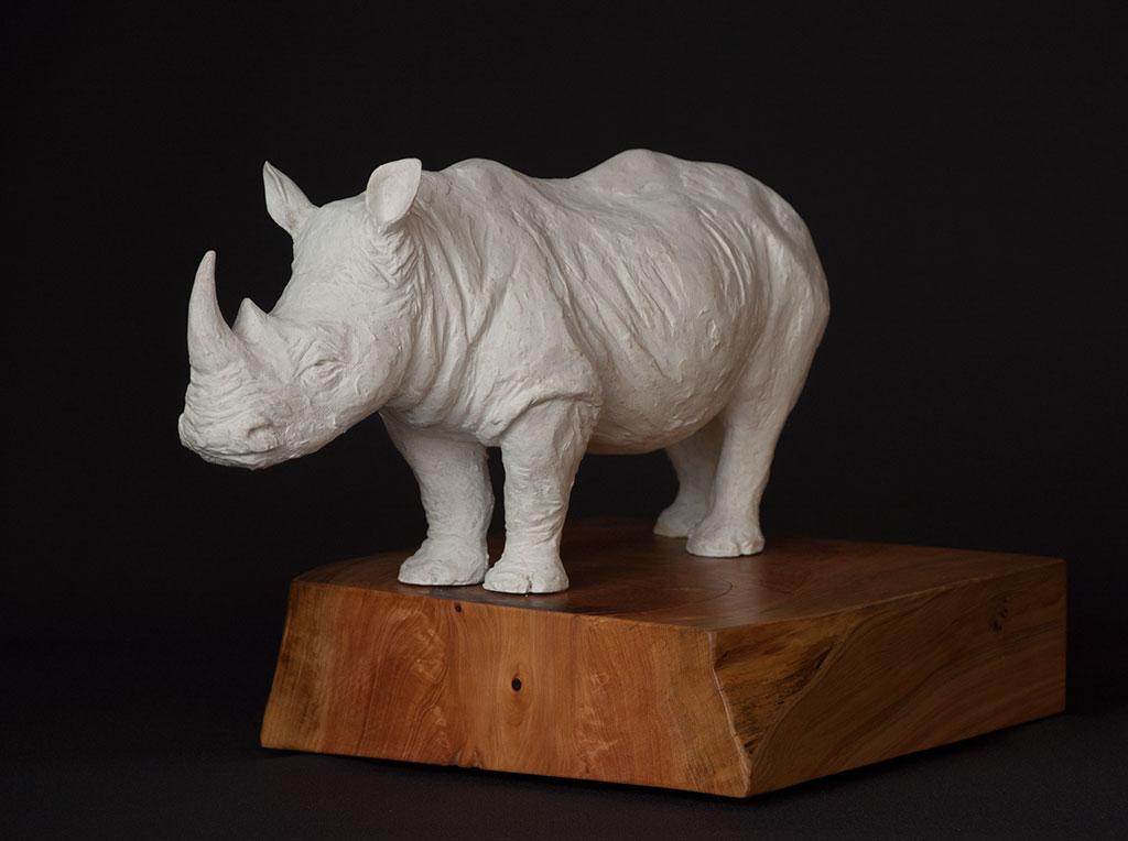 rhino_angle_left