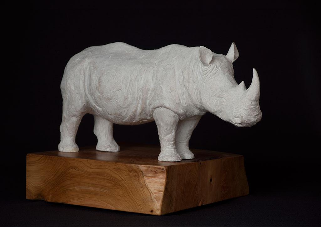 rhino_angle_right