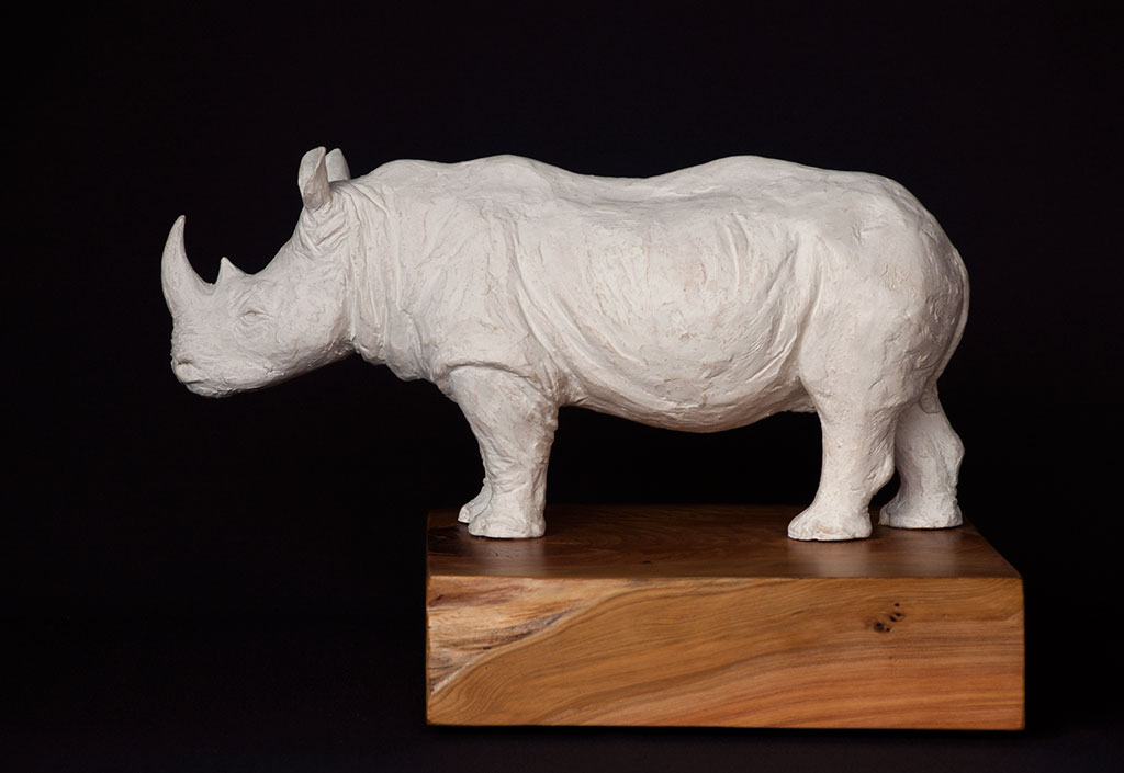 rhino_left