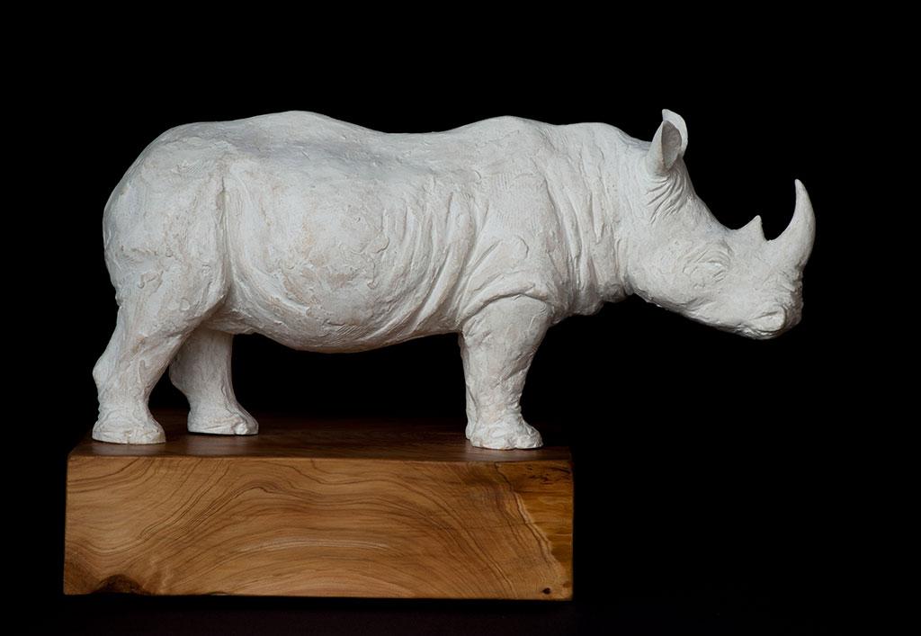 rhino_right