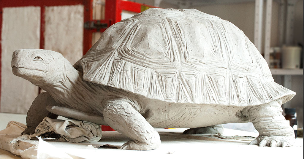 tortoise-side